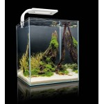 Aquael Shrimp Set Smart Plant 10 White