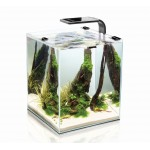 Aquael Shrimp Set Smart Plant 19 Black