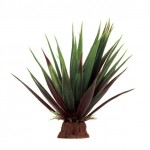 ArtUniq Agave red-green 16
