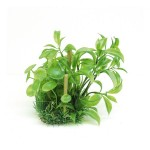 ArtUniq Alternanthera Bettzickiana & bamboo 20