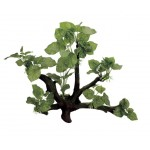 ArtUniq Branched Driftwood with Anubias L3